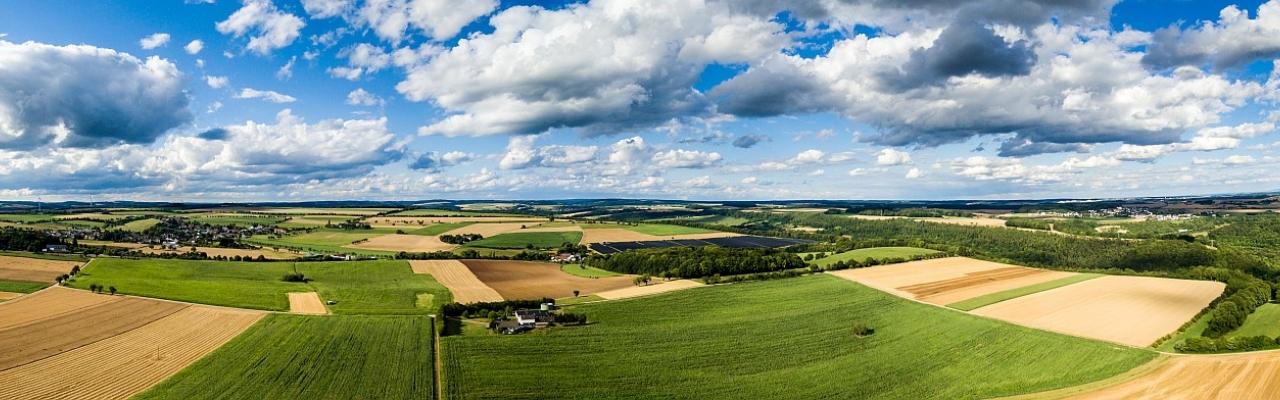 Felder und Wiesen bei uns im Eifelkreis